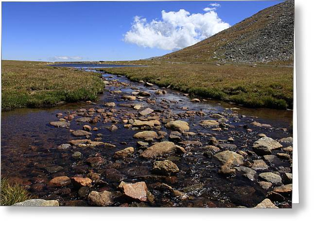 Denver Artist Greeting Cards - Summit Lake Stream Greeting Card by John Daly