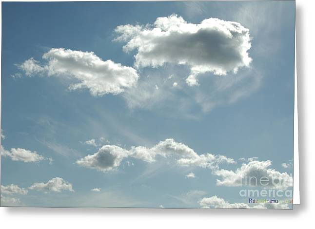 Weather Report Greeting Cards - Sun absorbed Cumulus Clouds Greeting Card by Raembrarium