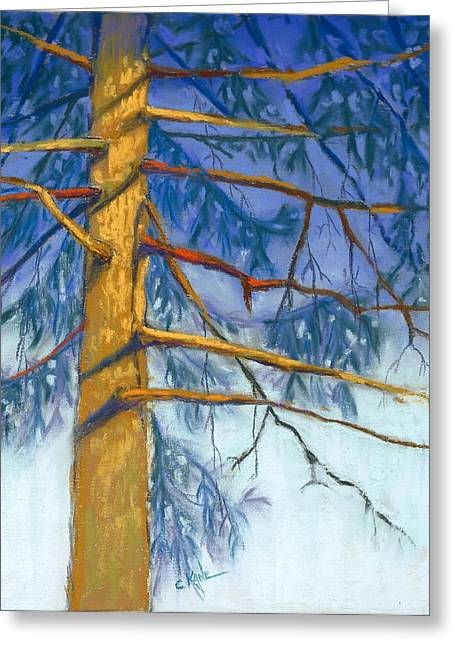 Pines Pastels Greeting Cards - Sun and Shade Pine Greeting Card by Christine Camp