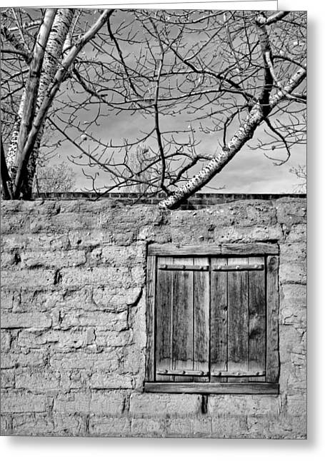 New Mexican Greeting Cards - Sun-Baked in Black and White Greeting Card by Nikolyn McDonald