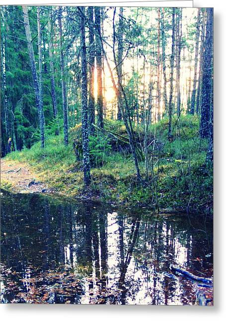 Basement Greeting Cards - Sun Breaking Through Greeting Card by Hilde Widerberg