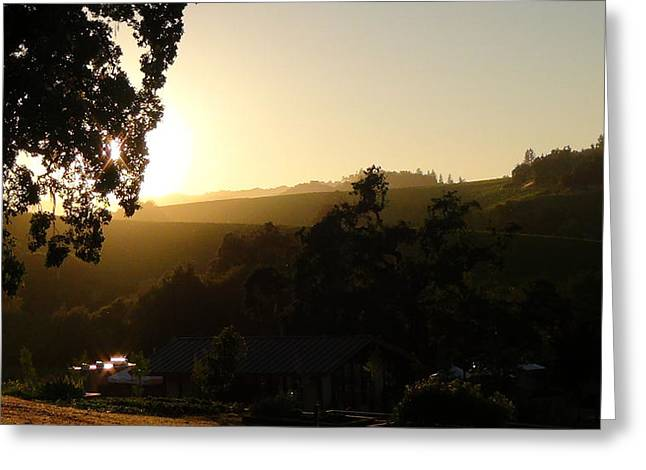 Sun Down Greeting Card by Shawn Marlow