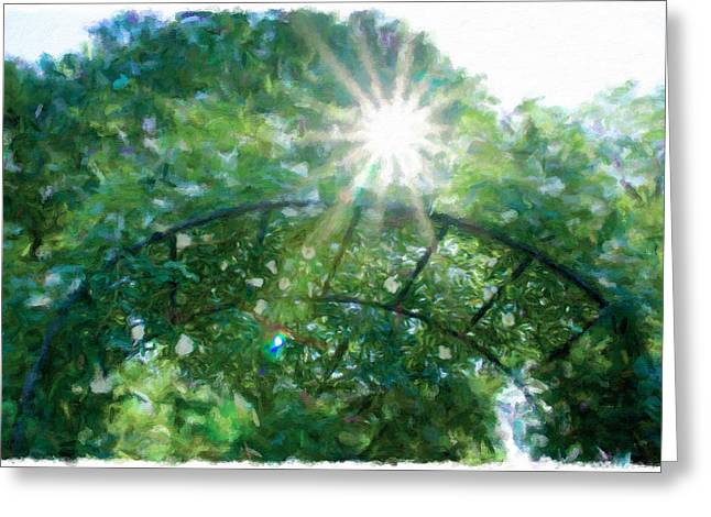 Trellis Greeting Cards - Sun Flare Over The White Rose Trellis Greeting Card by Alice Gipson