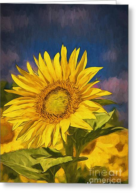 Flower Still Life Pyrography Greeting Cards - Sun Flower Greeting Card by Mauro Celotti