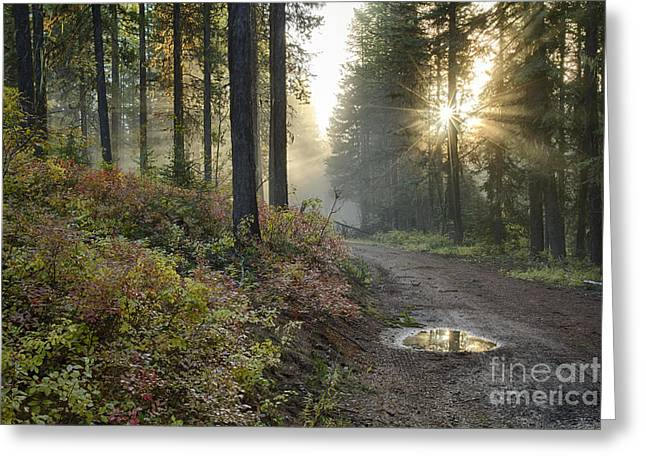 North Idaho Greeting Cards - Huckleberry Road Greeting Card by Idaho Scenic Images Linda Lantzy