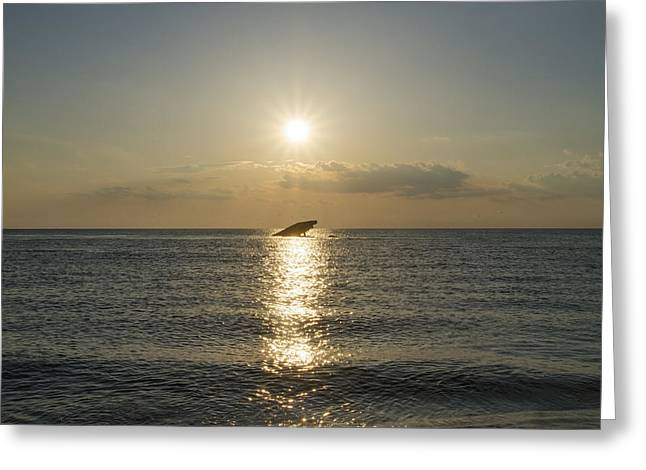 Sun Going Down In Cape May Greeting Card by Bill Cannon