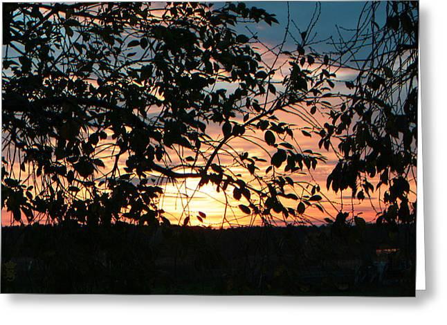 Brandenburg Digital Art Greeting Cards - Sun in the fields 03 Greeting Card by Li   van Saathoff