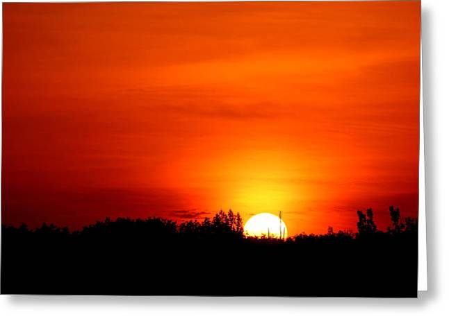 Fire In The Wood Greeting Cards - Sun In The Morning Greeting Card by Heike Hultsch