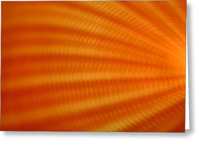Science Fiction Art Greeting Cards - Sun it Rises Greeting Card by Dazzle Zazz