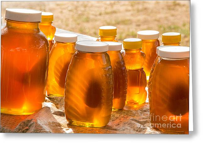 Beekeepers Greeting Cards - Sun Kissed Honey Greeting Card by Iris Richardson
