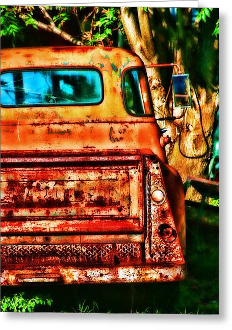 Rearview Greeting Cards - Sun Kissed Greeting Card by Toni Hopper