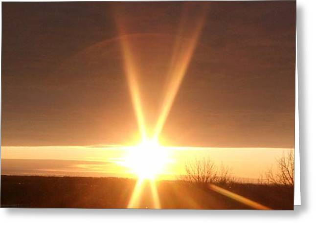 Purchase Greeting Cards - Sun Light Sun Bright Greeting Card by Gail Matthews