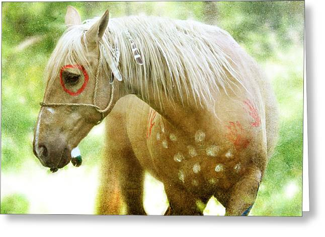 Shadow Horse Studios Greeting Cards - Sun Lit Greeting Card by Lyndsey Warren