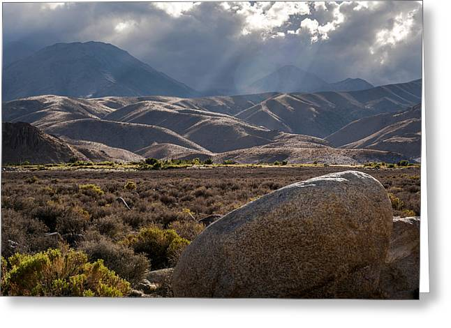 California Adventure Greeting Cards - Sun Rays Greeting Card by Cat Connor