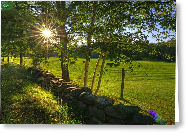 Meadow Shaft Greeting Cards - Sun Rays  Greeting Card by Donna Doherty
