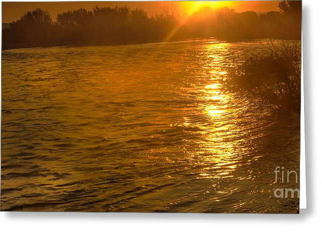 Scenic River Photography Greeting Cards - Sun Rays On The Payette River Greeting Card by Robert Bales