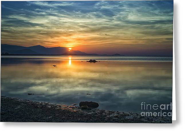 Michelle Greeting Cards - Sun Reflection Greeting Card by Michelle Meenawong