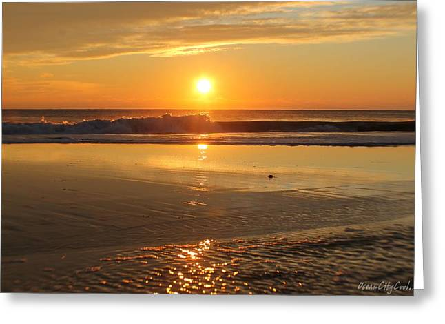 Saltlife Greeting Cards - Sun Ripples Greeting Card by Robert Banach