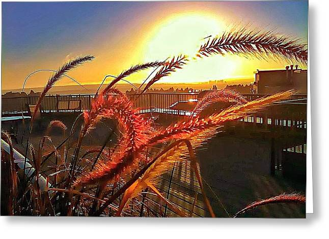 Ply Greeting Cards - Sun Rises Wheatley Greeting Card by Eddie G