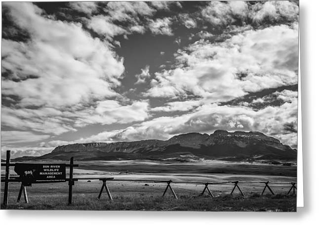 Tommytroutphoto Greeting Cards - Sun River Wildlife Management Area Greeting Card by Thomas Young