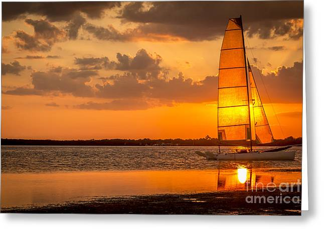 North Sea Greeting Cards - Sun Sail Greeting Card by Marvin Spates