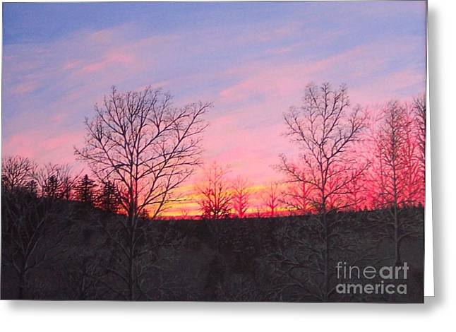 Finger Lakes Paintings Greeting Cards - Sun Set on the Finger Lakes in Upstate NY Pink Greeting Card by Carolyn Freligh