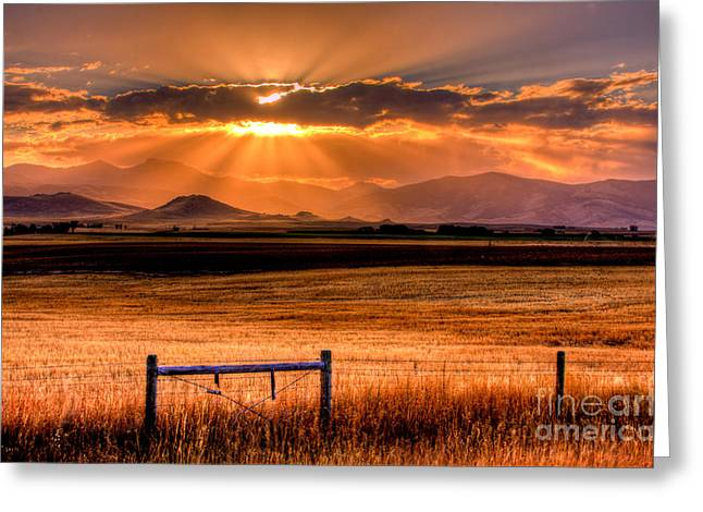 Field. Cloud Greeting Cards - Sun Sets On Summer Greeting Card by Katie LaSalle-Lowery