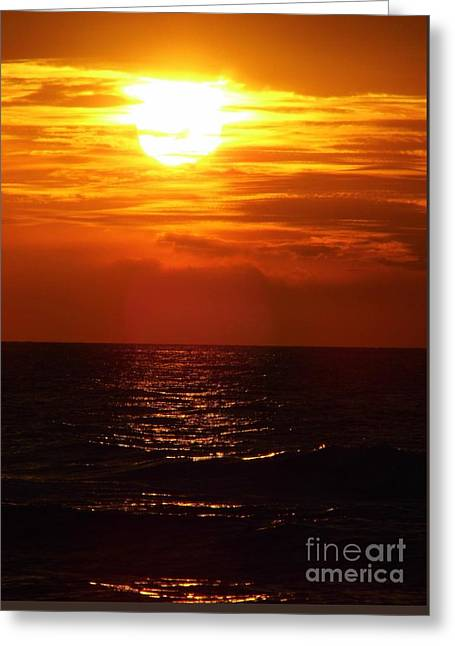 Reflection Of Sun In Clouds Greeting Cards - Sun Setting Greeting Card by D Hackett