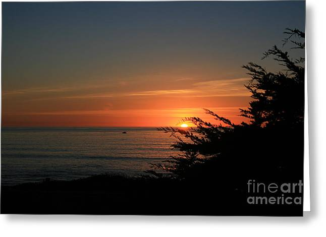Sun Setting in Cambria Calm Pacific Greeting Card by Ian Donley