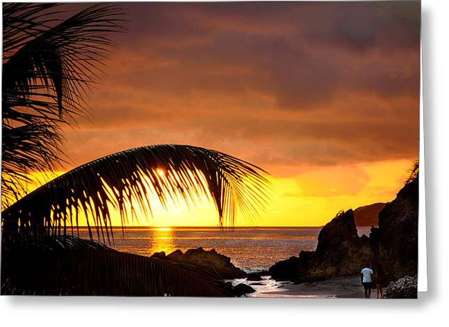 Newlyweds Greeting Cards - Sun Setting on Romance Greeting Card by Camille Lopez