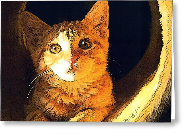 Kitten Prints Mixed Media Greeting Cards - Sun Shine Tabby Greeting Card by Elia Peters