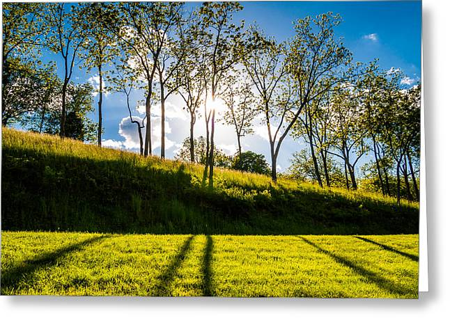 Sun shining through trees and shadows on the grass at Antietam National Battlefield Maryland Greeting Card by Jon Bilous