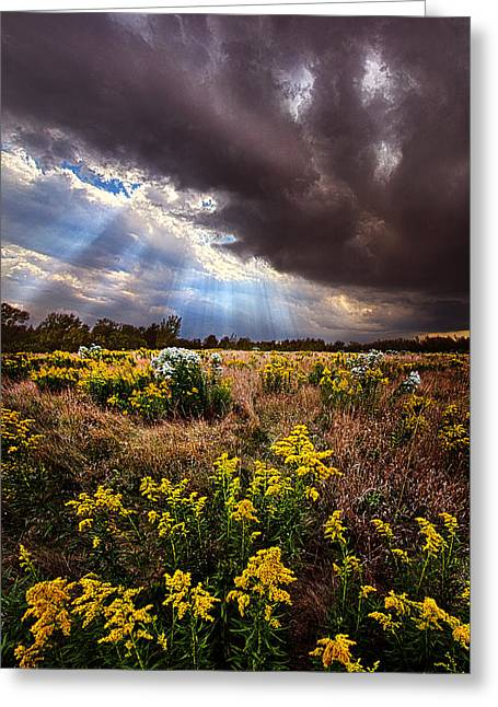 Winter Storm Greeting Cards - Sun Showers Greeting Card by Phil Koch
