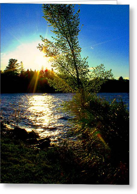 Reflections In River Pyrography Greeting Cards - Sun star setting  Greeting Card by Kelly McAleer