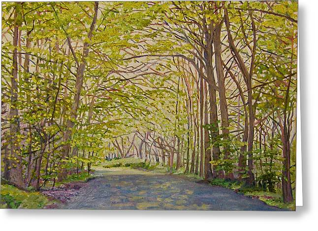 Dappled Light Greeting Cards - Sun through trees Greeting Card by Helen White