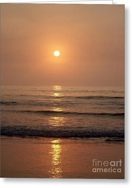 Reflections Of Sun In Water Greeting Cards - Sun Up Along Hampton Beach Greeting Card by Eunice Miller