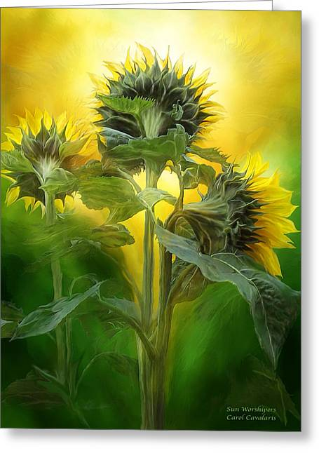 Yellow Sunflower Greeting Cards - Sun Worshipers Greeting Card by Carol Cavalaris
