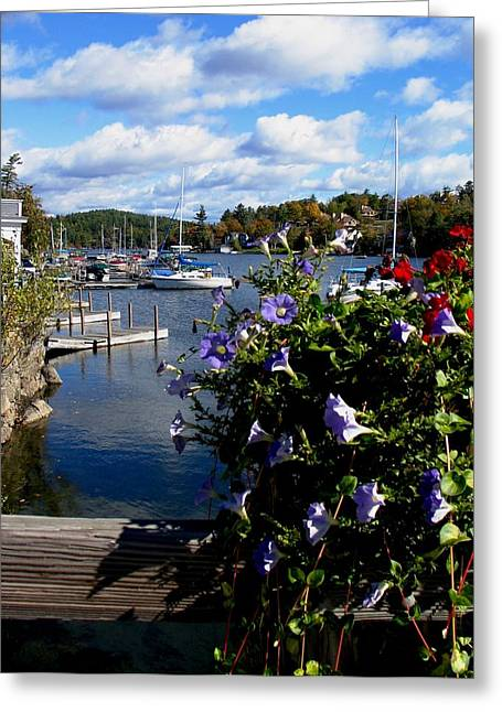 Sailboats In Water Greeting Cards - Sunapee Harbor 1 Greeting Card by Will Boutin Photos