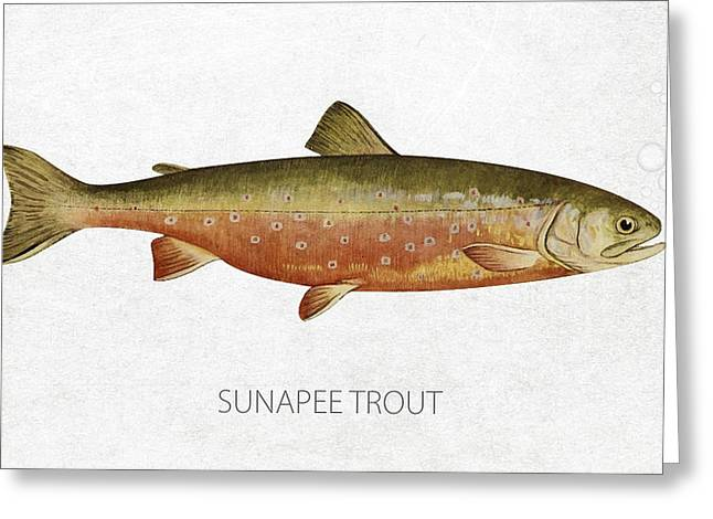 Salmon Digital Greeting Cards - Sunapee Trout Greeting Card by Aged Pixel