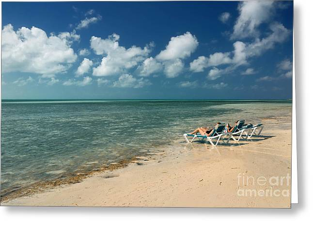 Little Stirrup Cay Greeting Cards - Sunbathers on the Beach Greeting Card by Amy Cicconi