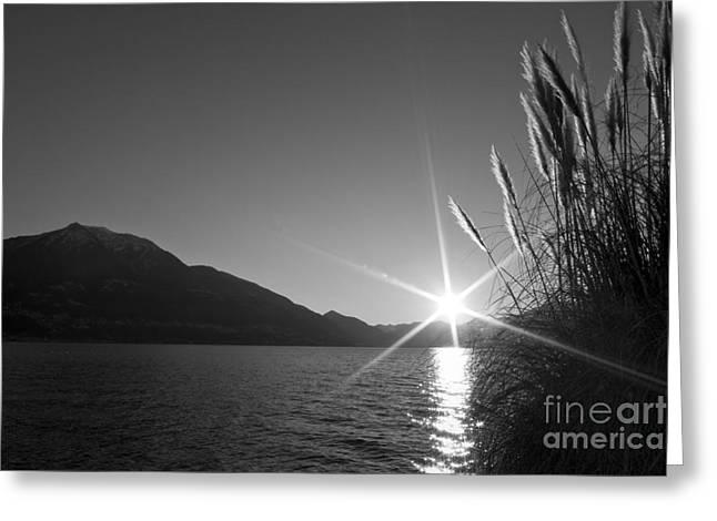 Monochrome Pyrography Greeting Cards - Sunbeam Greeting Card by Maurizio Bacciarini
