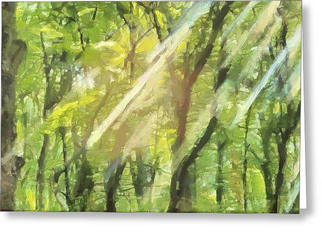 The Sun God Greeting Cards - Sunbeams In The Forest Greeting Card by Dan Sproul