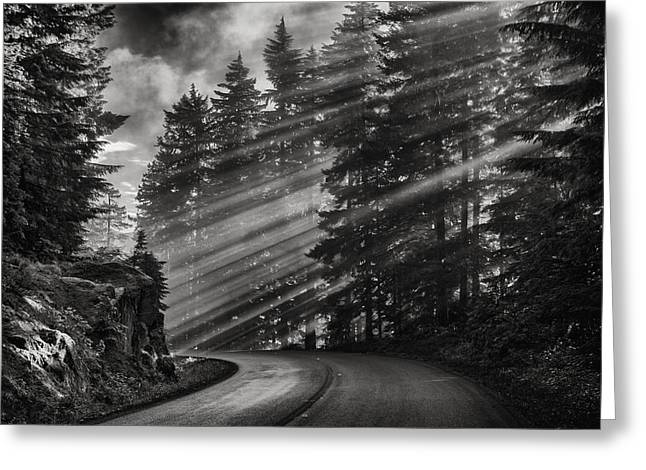 Decor Photography Pyrography Greeting Cards - Sunbeams on Stevens Canyon Road in Mount Rainier National Park Greeting Card by Ed Thune