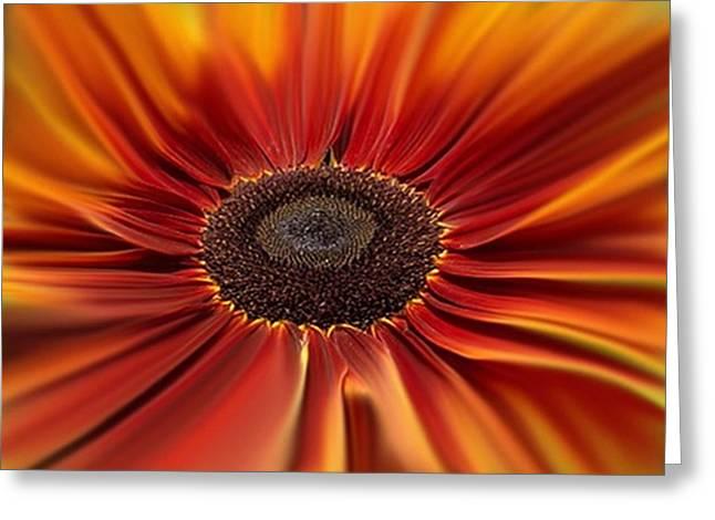 Award Winning Art Mixed Media Greeting Cards - Sunburst Greeting Card by Dennis Buckman