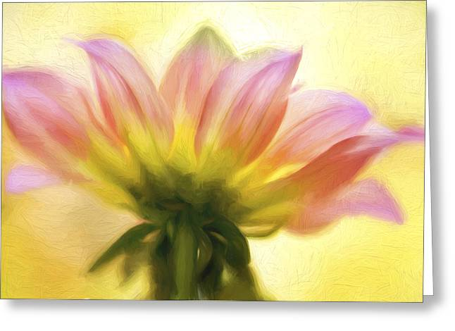 Digital Manipulation Greeting Cards - Sunburst Painted Greeting Card by Mary Jo Allen