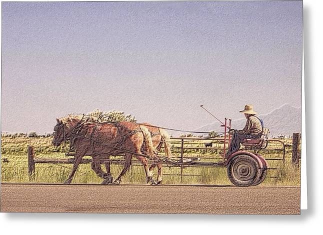 Horse Driven Wagon Greeting Cards - Sunday Drive Greeting Card by Roxie Crouch