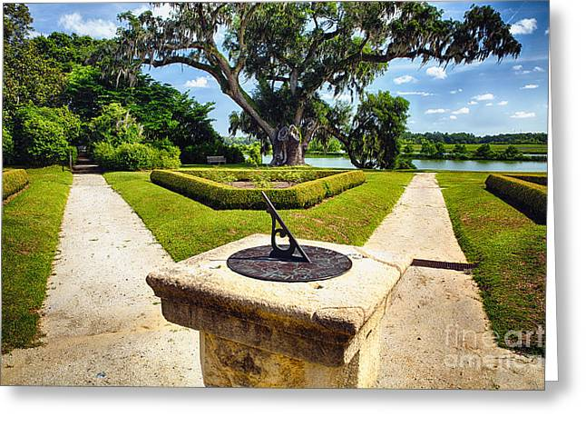 Middleton Greeting Cards - Sundial in Plantation Garden Greeting Card by George Oze