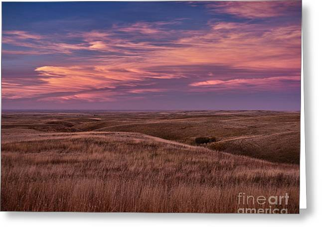 Cypress Hills Greeting Cards - Sundown Enchantment Greeting Card by Royce Howland