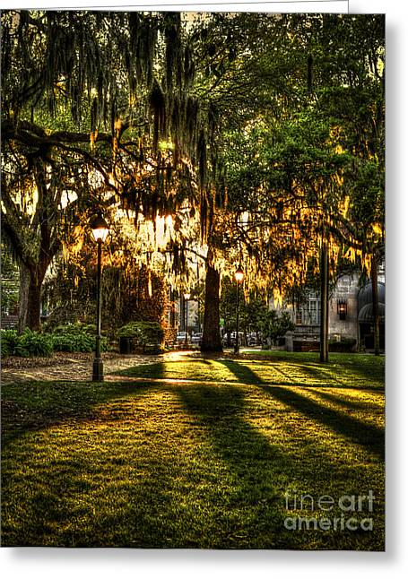 Chatham County Greeting Cards - Sundown on Johnson Square in Savannah Greeting Card by Reid Callaway
