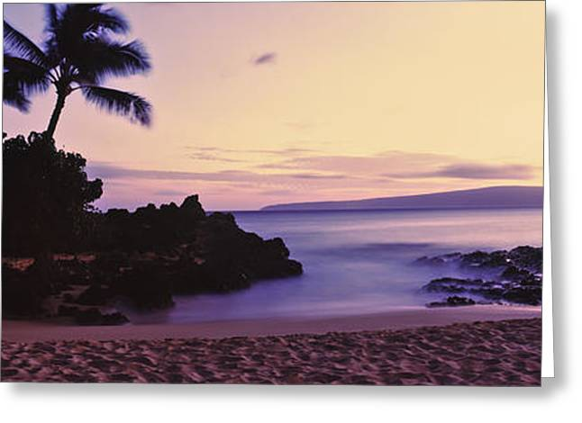 Tree In Rock Greeting Cards - Sundown On North Shore, Oahu, Hawaii Greeting Card by Panoramic Images